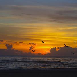 TN Fairey - Sunrise over the Gulf