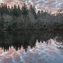 Loree Johnson - Sunrise Reflections
