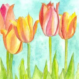 Cathie Richardson - Sunrise Tulips