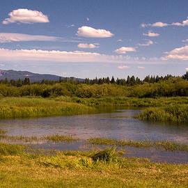 Bob and Nadine Johnston - Sunriver Oregon Thousand Trails Preserve
