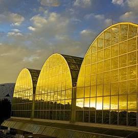 Barbara Zahno - Sunset at Biosphere2