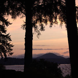 Jeanette C Landstrom - Sunset At Lake Quinault