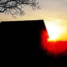 Tina M Wenger - Sunset AUGUSTUS