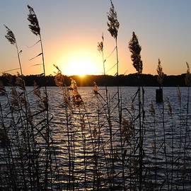 Michele Kaiser - Sunset Aura