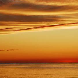 Linda Covino - Sunset backdrop