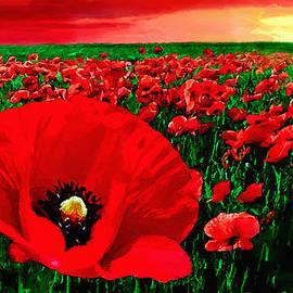 Bob and Nadine Johnston - Sunset California Poppy Preserve
