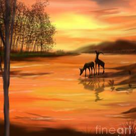 Chitra Helkar - Sunset