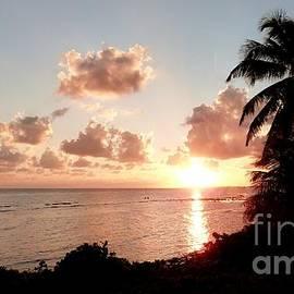 Amar Sheow - Sunset Dip