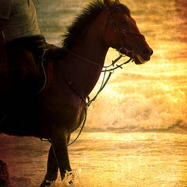 Loriental Photography - Sunset Horse