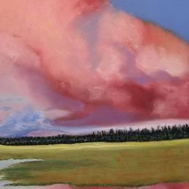 Michele Turney - Sunset Lake Mary AZ