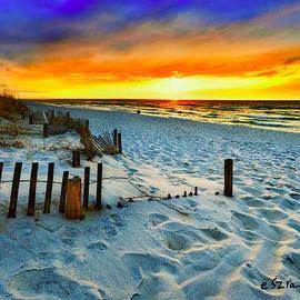Eszra Tanner - Sunset Landscape-Red Beach Sunset