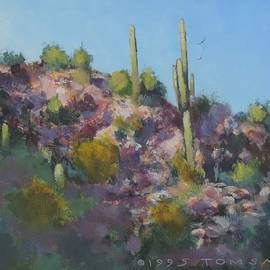 Bill Tomsa - Sunset on Hawk Ridge