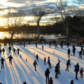 Diane Lent - Sunset on Ice