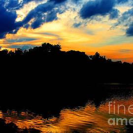 Diana Sainz - Sunset on Lake Maitland by Diana Sainz
