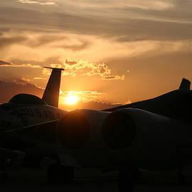 David S Reynolds - Sunset on the cold war