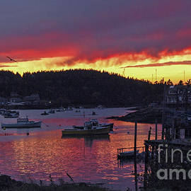 Alana Ranney - Sunset Over Cutler Harbor