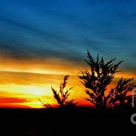 Jim Fitzpatrick - Sunset overlooking Pacifica CA III