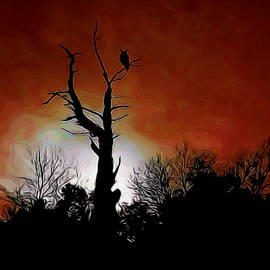 Ernie Echols - Sunset Owl Digital Art