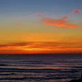 Forrest Munger - Sunset Sea Star