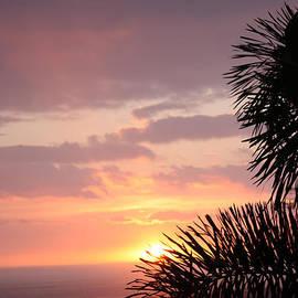 Karen Nicholson - Sunset Silhouette 4