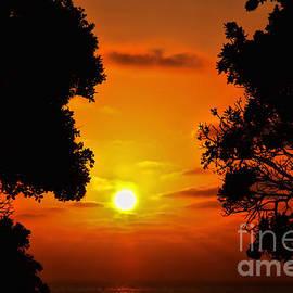 Diana Sainz - Sunset Silhouette by Diana Sainz