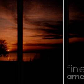 Michelle Frizzell-Thompson - Sunset Silouette
