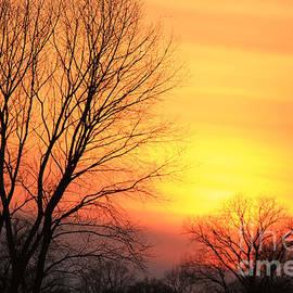 Four Hands Art - Sunset vision
