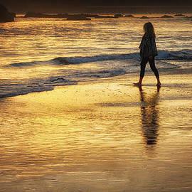 Robert Woodward - Sunset Walk On San Simeon Beach