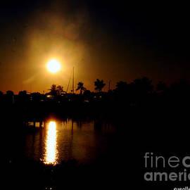 Sue Rosen - Sunsets