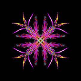 Bruce Nutting - Superb Snowflake