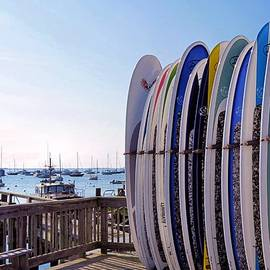 Janice Drew - Surfboards