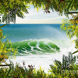 Carlos Caetano - Surfing Paradise