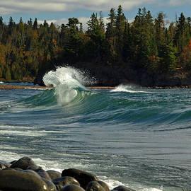 James Peterson - Surf