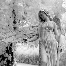 Kathy Fornal - Surreal Dreamy Fantasy Infrared Angel Nature