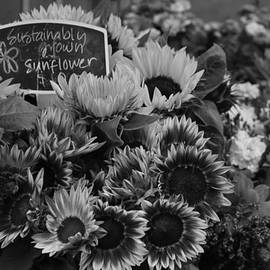 Suzanne Gaff - Sustainably Grown in Black and White