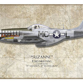 Craig Tinder - Suzanne P-51D Mustang - Map Background