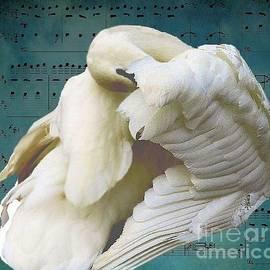 Janette Boyd - Swan Song