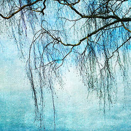 Randi Grace Nilsberg - Swaying in the Wind