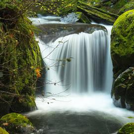 Kristal Talbot - Sweet Creek Falls in November