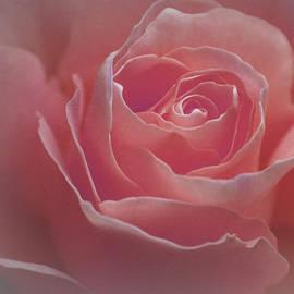 The Art Of Marilyn Ridoutt-Greene - Sweet Embrace