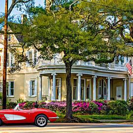 Steve Harrington - Sweet Home New Orleans 3