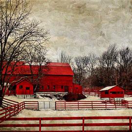 Pamela Phelps - Sweet Winter Farm