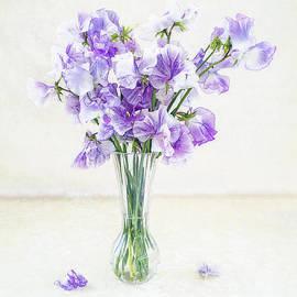 Sarah-fiona  Helme - Sweetest Scent