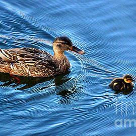 Judy Palkimas - Swimming Lesson