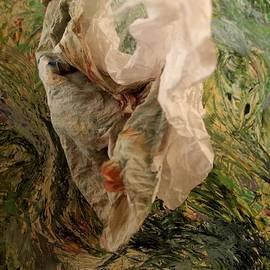 Nancy Kane Chapman - Swirling Figure