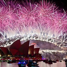 Rick Drent - Sydney Fireworks - Pink