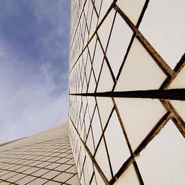Darin Volpe - Sydney Opera House Tile Roof