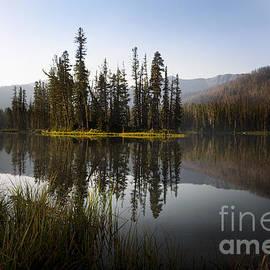 Wildlife Fine Art - Sylvan Lake Yellowstone National Park