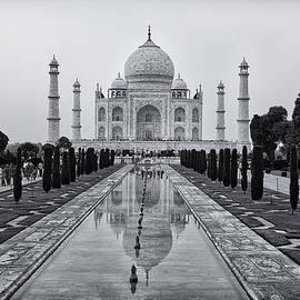 Kim Andelkovic - Taj Mahal