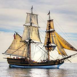 Liz Vernand - Tall Ship